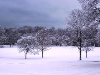 Winter Wonderland -- White by rpg-chick