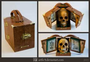 Anatomy Doctor's case - steampunk skull box by artfx-9