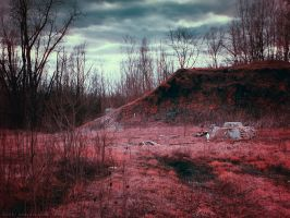 Refuge on the Trail by KBeezie