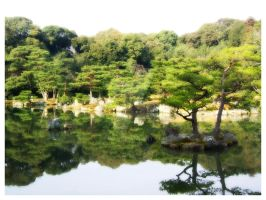 Nature of Japan by FDQ