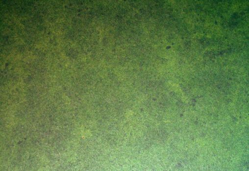 Green Texture by asphyxiate-Stock