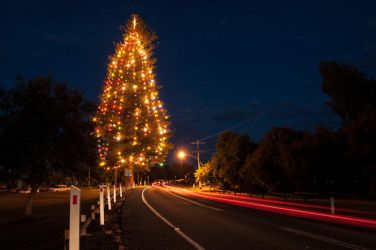 Point Lonsdale Christmas tree by daniellepowell82
