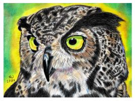 Great Horned Owl by X-Enlee-X
