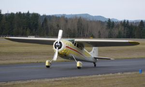 Cessna 195 by shelbs2