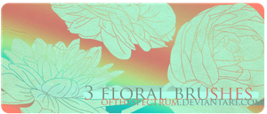 3 Floral Brushes by ofthespectrum
