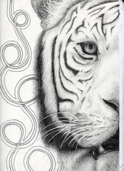 Tiger by SpazzBerry15