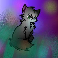 Hollyleaf Again by Hailbeat