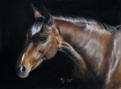 Horse in Pastel by lluvia-estival