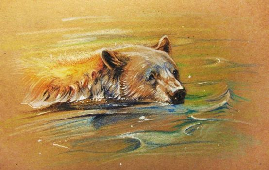 Bear floats by SalamanDra-S