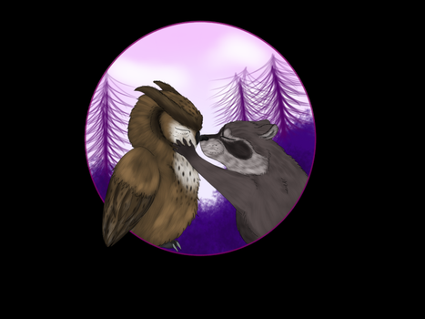 Owl and raccoon by blooddripsofawarrior