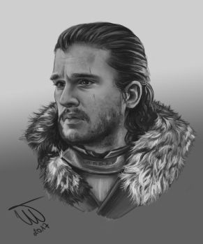 King in the North (close up 2) by Spring-Fairy