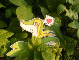 Snivy used Attract by The-Randomer