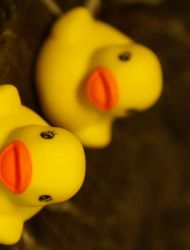 The function of a rubber duck? by goldenwings3000
