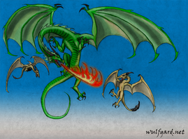 Wulfgard - Dragon vs. Wyverns by Maverick-Werewolf
