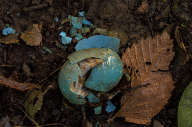 Broken Egg by sellyourhate