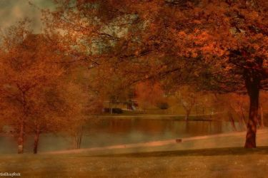 Simply Red by Fall-Leaves-Club