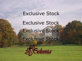 Exclusive Stock :: Pavilion by Selunia
