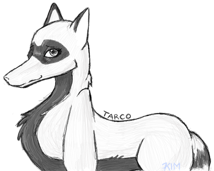 Tarco by l3ubbles
