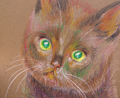 Crayon Cat by zara-leventhal