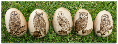 Wooden Owl Eggs by squanpie