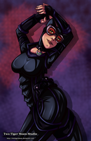 Catwoman by TwoTigerMoon