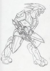 Is this what you all want? Sangheili? by HWPD