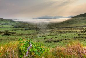 Early Morning Mist by cprmay