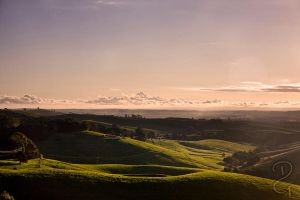 Koonwarra Views by Grayda