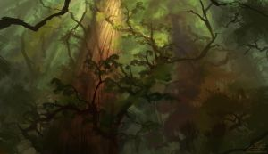 Forest by Chillay