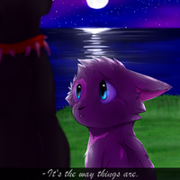 The way things are by RainbowGlaze123