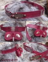 Warlord Belt and Beltpouch by Meredyth