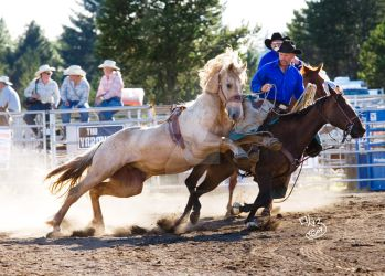 Shelton Rodeo- Lunge by sorrelstang