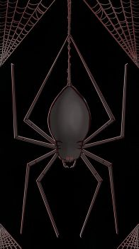 Spider by HisRedRightHand