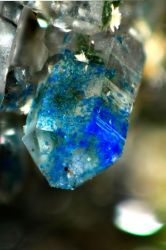 Blue Crystal Kinoite Mineral Sample #1 by Crixans