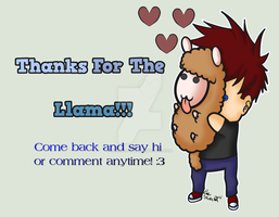 Thanks For The Llama! by LinkSketchit