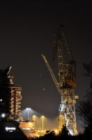 Nocturnal Crane by OcioProduction