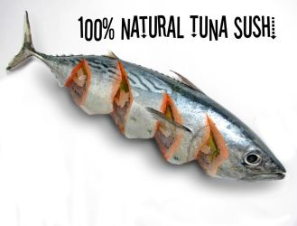 100 percent natural tuna sushi by benasayer