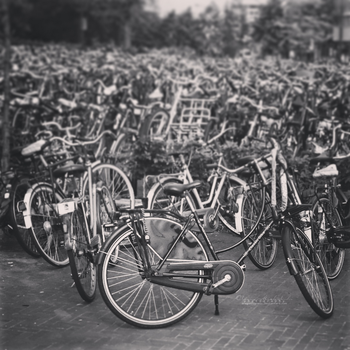Bikes in Venlo. by OliviaMichalski