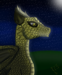 A Walk in the moonlight by Skythedragonwolf