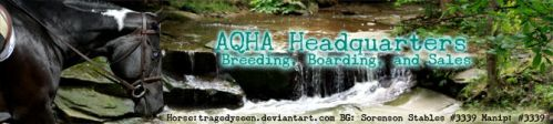 HEE AQHA Headquarters - Banner ~2017~ by GabriellasFantasy