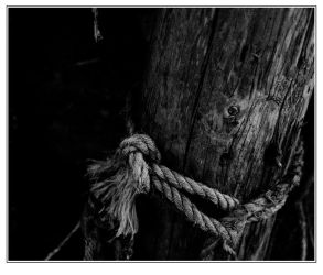 Textured Rope by hellfire321
