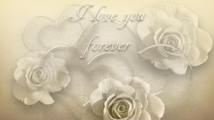 I love your forever by hallbe