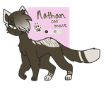 nathan 2018 by vvolfeh