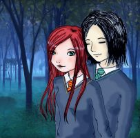 Snape and Lily by Lucy--chan
