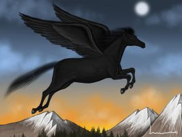 Black Pegasus by Louisetheanimator