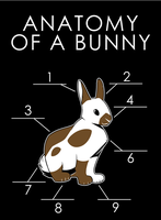 Anatomy Of A Bunny by artwork-tee