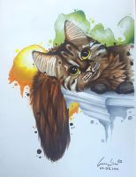 My Cat with Copics  by Che-Nupet
