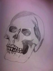 Skull by Icing0nTheCake