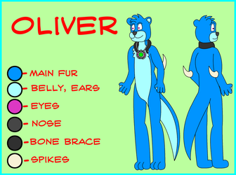 Oliver Reference Sheet by D-Rock92
