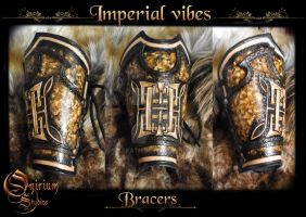 Imperial Vibes - Vambraces / bracers (FOR SALE) by Deakath
